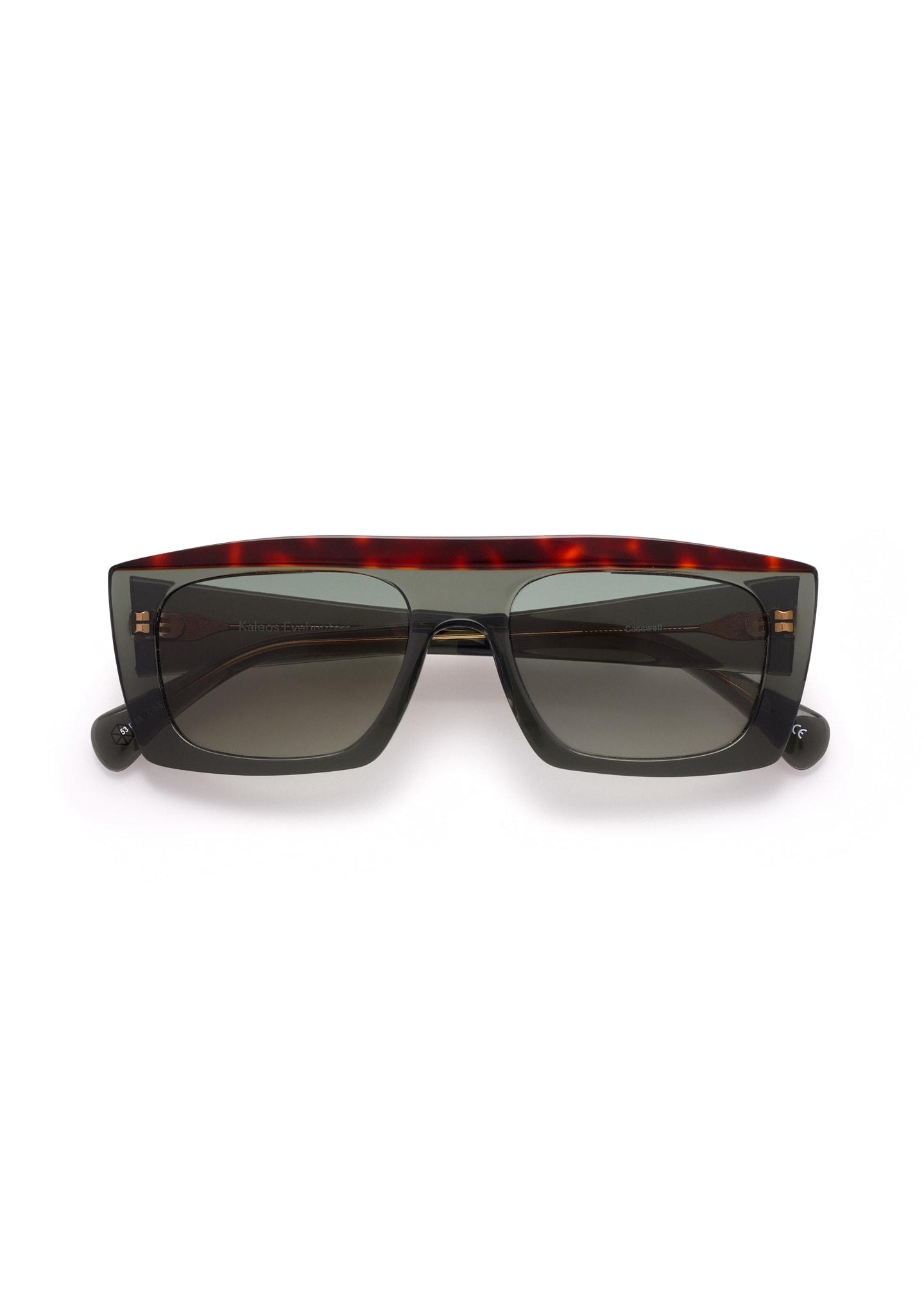 Gafas Casswell Color 2